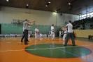 Lubliniecka_Olimpiada_Karate_12