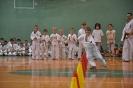 Lubliniecka_Olimpiada_Karate_16