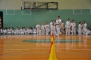 Lubliniecka_Olimpiada_Karate_17