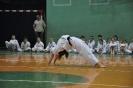 Lubliniecka_Olimpiada_Karate_20