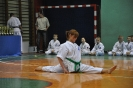 Lubliniecka_Olimpiada_Karate_21