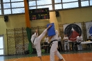 Lubliniecka_Olimpiada_Karate_29