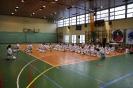 Lubliniecka_Olimpiada_Karate_2