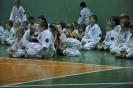 Lubliniecka_Olimpiada_Karate_31