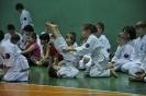 Lubliniecka_Olimpiada_Karate_32