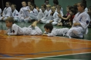 Lubliniecka_Olimpiada_Karate_34
