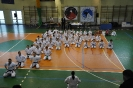 Lubliniecka_Olimpiada_Karate_3