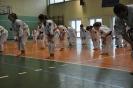 Lubliniecka_Olimpiada_Karate_6