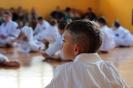Lubliniecka Olimpiada Oyama Karate 2015 - zdj. Sebastian Hadryś