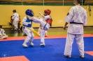 olimpiada_mikolajkowa_2017__106