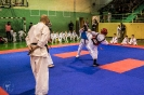 olimpiada_mikolajkowa_2017__118
