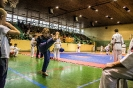 Mikołajkowa Olimpiada Oyama Karate 2017
