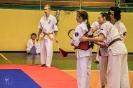 olimpiada_mikolajkowa_2017__150