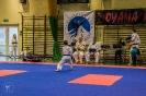 olimpiada_mikolajkowa_2017__51