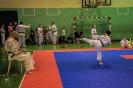 olimpiada_mikolajkowa_2017__83