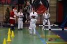 mikolajkowa_olimpiada_oyama_karate_2018_2