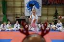 mikolajkowa_olimpiada_oyama_karate_2018_5