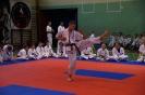 mikolajkowa_olimpiada_oyama_karate_2018_7