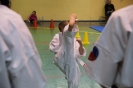 mikolajkowa_olimpiada_oyama_karate_2018_9