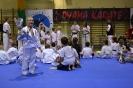 Mikołajkowy Turniej Oyama Karate, Lubliniec, 14.12.2013 r.