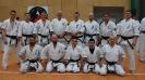 Ogólnopolskie Seminarium Oyama Karate