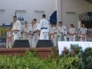 Pokaz Dni Lublińca, 2006 r.