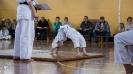 puchar-kata-lubliniec-2014-_58