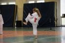 Puchar_Lubliniec_2010_11