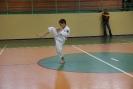 Puchar_Lubliniec_2010_17