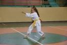 Puchar_Lubliniec_2010_1