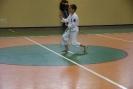 Puchar_Lubliniec_2010_22