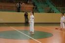 Puchar_Lubliniec_2010_24