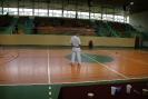 Puchar_Lubliniec_2010_26