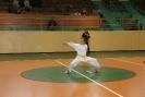 Puchar_Lubliniec_2010_33