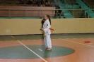 Puchar_Lubliniec_2010_5