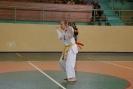 Puchar_Lubliniec_2010_6