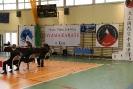 Puchar_Lubliniec_2010_7